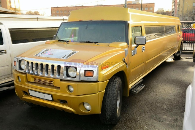 new-limo--sanaevmoscow-all-0018.jpg
